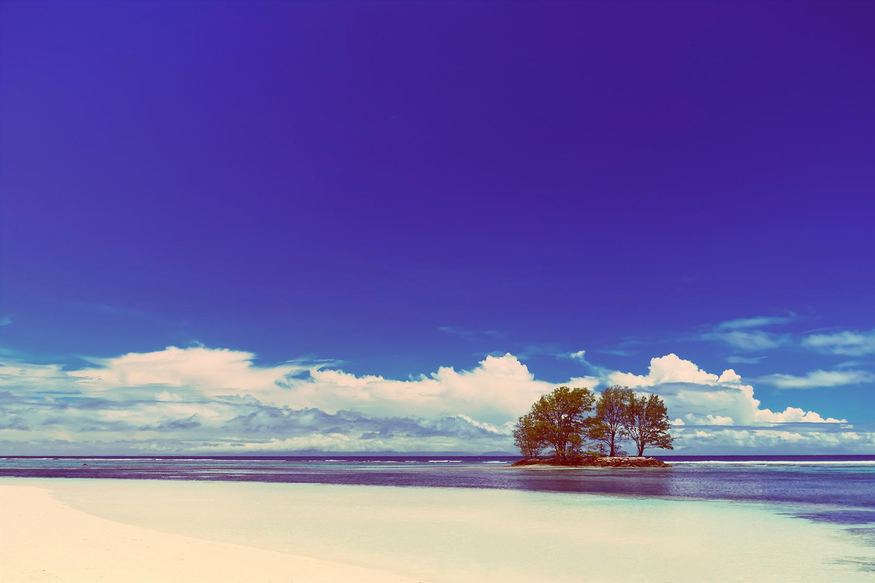 White-Coral-Beach-Sand-And-Azu