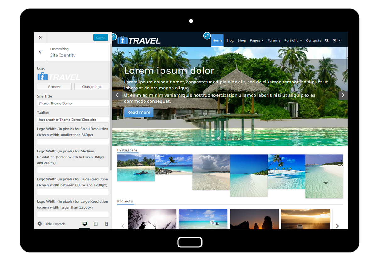 tTravel Customizer Site Identity