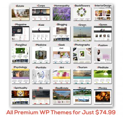 all wordpress themes