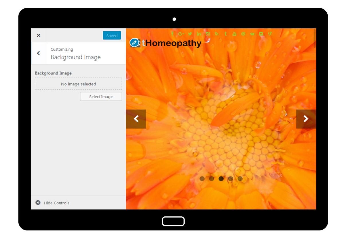 tHomeopathy Customizer: Background Image